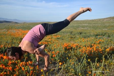 Eka Pada Galavasana :: Antelope Valley, CA