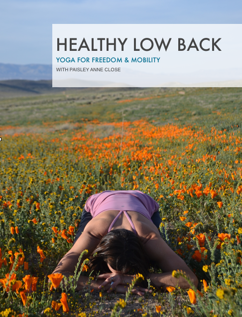 healthy_low_back